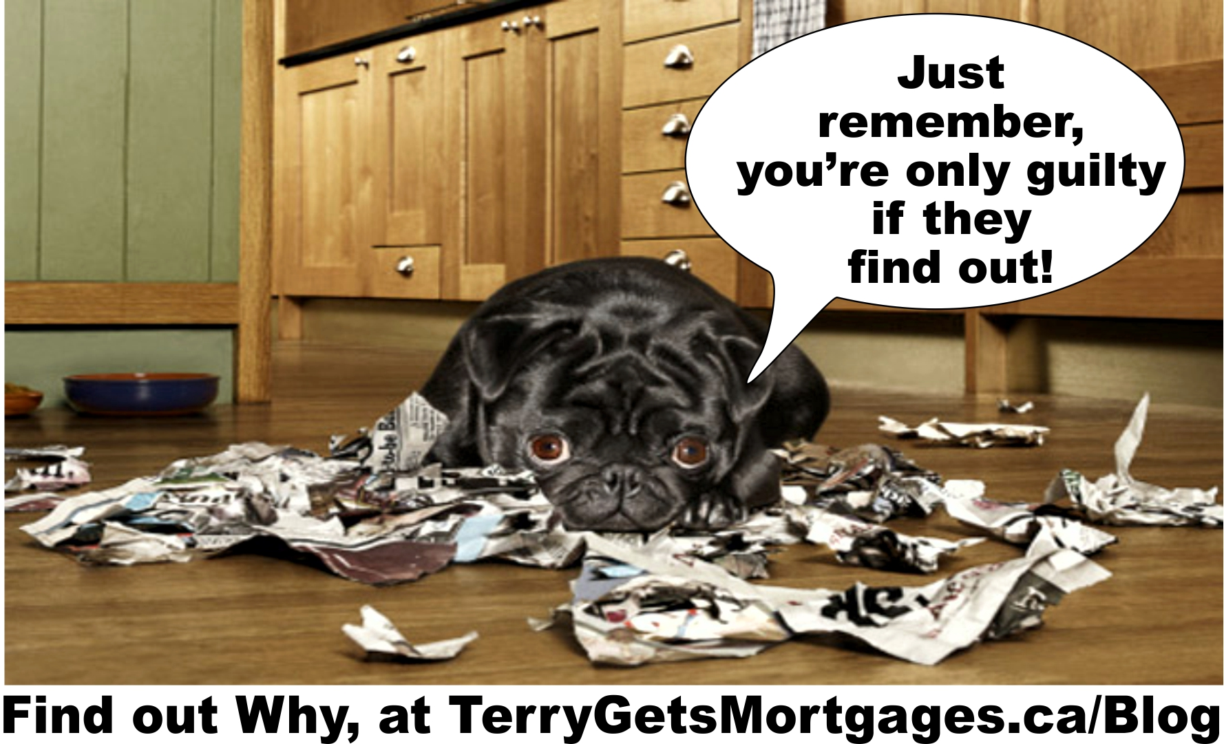 Tell the TRUTH on your Mortgage Applications: Don't get caught in Little White lies – or Fraud!